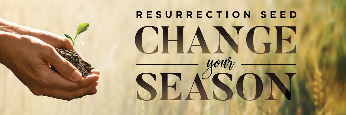 Resurrection Seed 2019