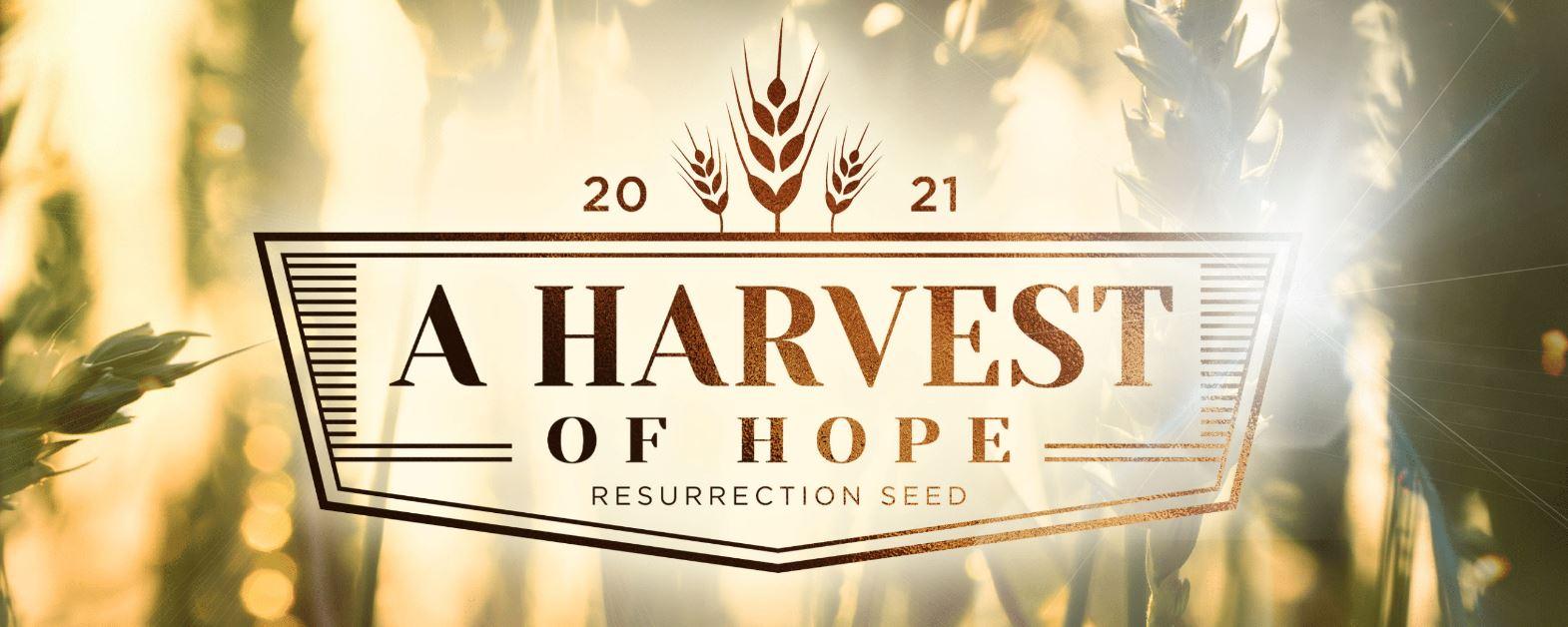 Resurrection Seed 2021: A Harvest of Hope